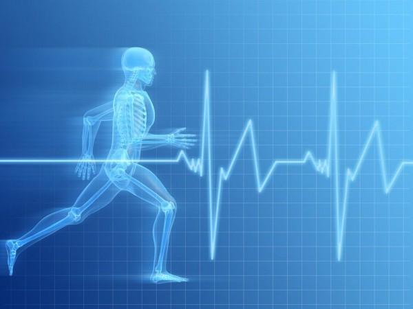 esteira eletrica com batimentos cardiacos Esteira Elétrica   Batimentos Cardiacos